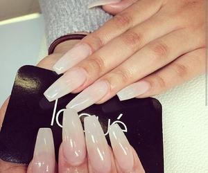 beauty, nails, and long nails image