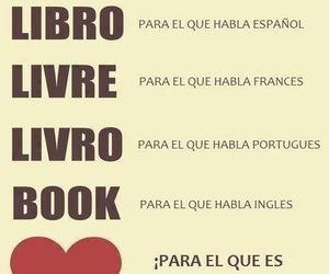 book, livre, and read image