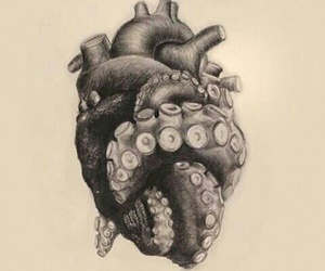 art, heart, and octopus image