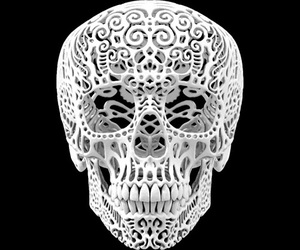 skull and 3d image