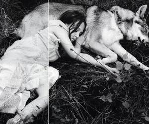 wolf, girl, and sleep image