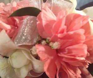carnation, dance, and pink image