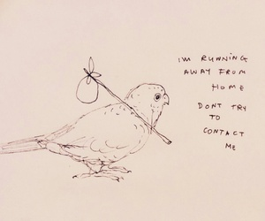 quote and bird image