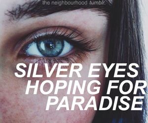 silver, thenbhd, and theneighbourhood image