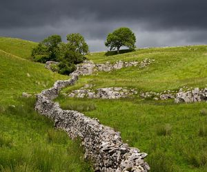 countryside, nature, and yorkshire dales image