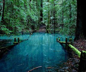 nature, water, and beautiful image
