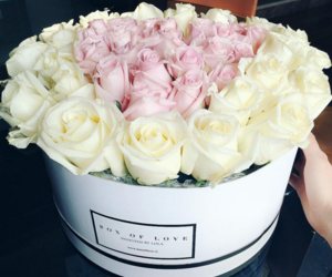 flowers, roses, and pretty image