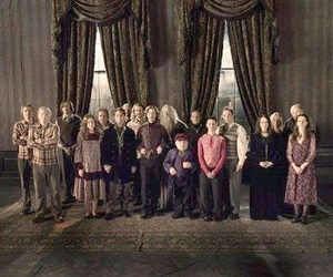 harry potter, order of the phoenix, and original ordem image