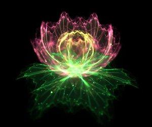 green, lotus, and meditation image