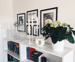 black and white, candle, and flower image