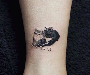 animal, cats, and tattoo image