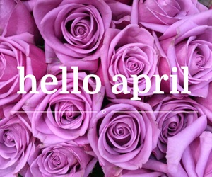 april, flowers, and purple image