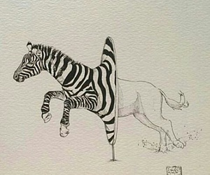 art and zebra image