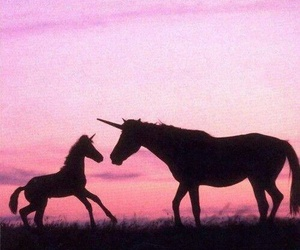 unicorn, pink, and horse image