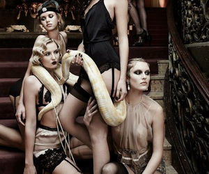 20's, gntm 2016, and snake image