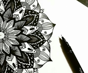 art, black & white, and floral image