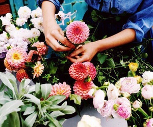 flowers, tumblr, and indie image