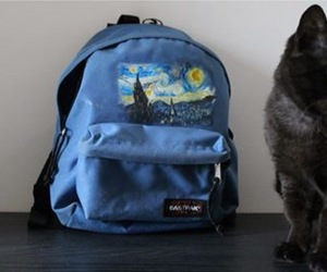 bag, blue, and cat image