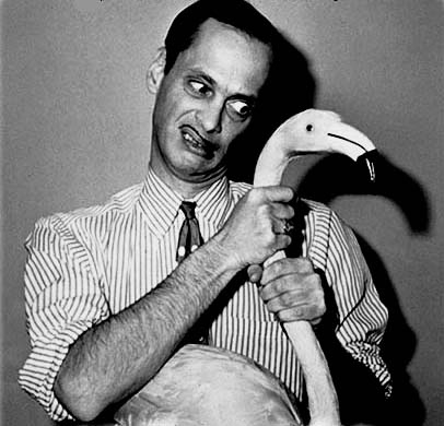 flamingo, John Waters, and weird image