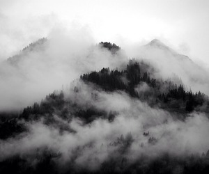 mountains, black and white, and fog image