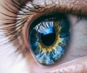 blue, eyes, and yellow image