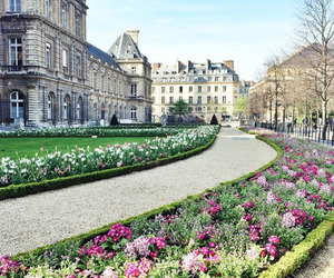 flowers, spring, and travel image