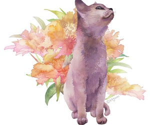 cat, flowers, and background image