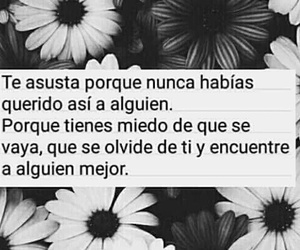 frases, tumblr, and amor image