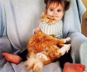 cat, baby, and cute image