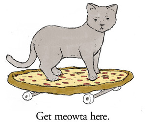 cat, pizza, and meow image