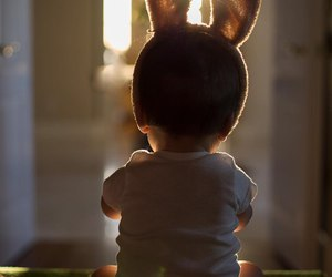 baby, hare, and cute image