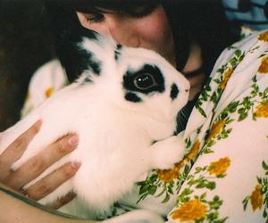 bunny, girl, and rabbit image