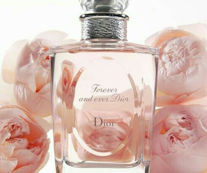 beauty, dior, and perfume image