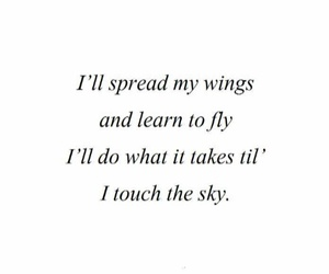 fly, quote, and sky image