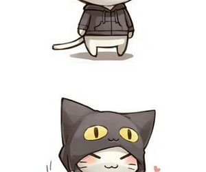 cat, cute, and neko image