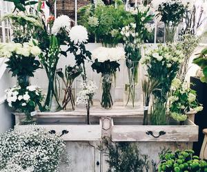 beautiful, flowera, and instagram image