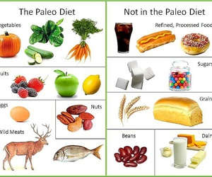 diet, food, and paleo image