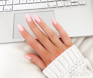 baby pink, chic, and fashion image