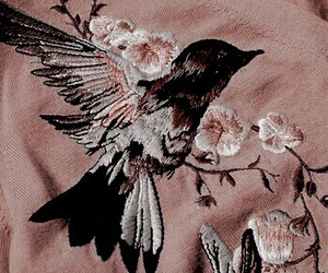bird, aesthetic, and pink image