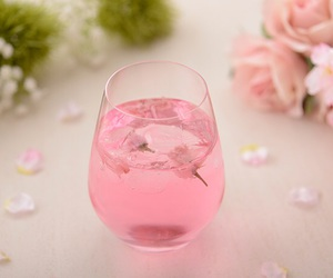 alcohol, cherry blossom, and drink image