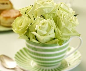 teacup image