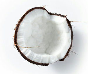 coconut, white, and food image