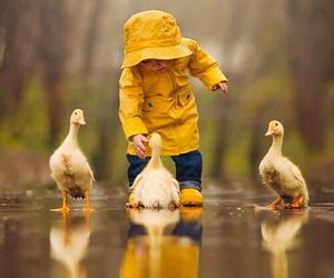 duck, rain, and baby image