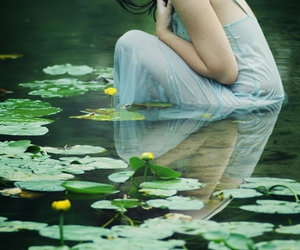 lily pads, nymph, and pond image
