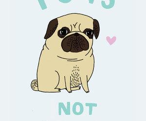 pug, dog, and drugs image