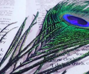 books, green n blue, and peacok feathers image