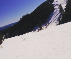 snowboard, sol, and vinter image