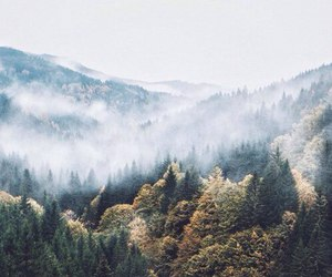 clouds, forest, and landscape image