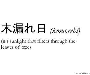 japanese, sunlight, and words image