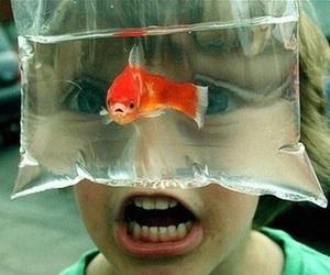fish, kids, and boy image